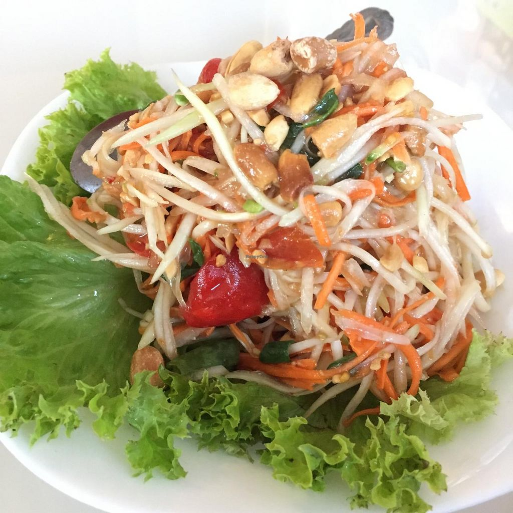"""Photo of Green Palace Thai Vegetarian  by <a href=""""/members/profile/MOJO%21"""">MOJO!</a> <br/>Som Tum - Papaya Salad. This is so delicious! <br/> January 24, 2015  - <a href='/contact/abuse/image/32508/91336'>Report</a>"""