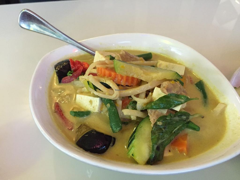 """Photo of Green Palace Thai Vegetarian  by <a href=""""/members/profile/MOJO%21"""">MOJO!</a> <br/>Green Curry - has some heat <br/> January 24, 2015  - <a href='/contact/abuse/image/32508/91337'>Report</a>"""
