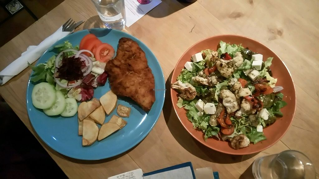 """Photo of La Oveja Negra  by <a href=""""/members/profile/IsabelaePhanerothyme"""">IsabelaePhanerothyme</a> <br/>Salad and breaded seitan  <br/> November 23, 2017  - <a href='/contact/abuse/image/32567/328591'>Report</a>"""