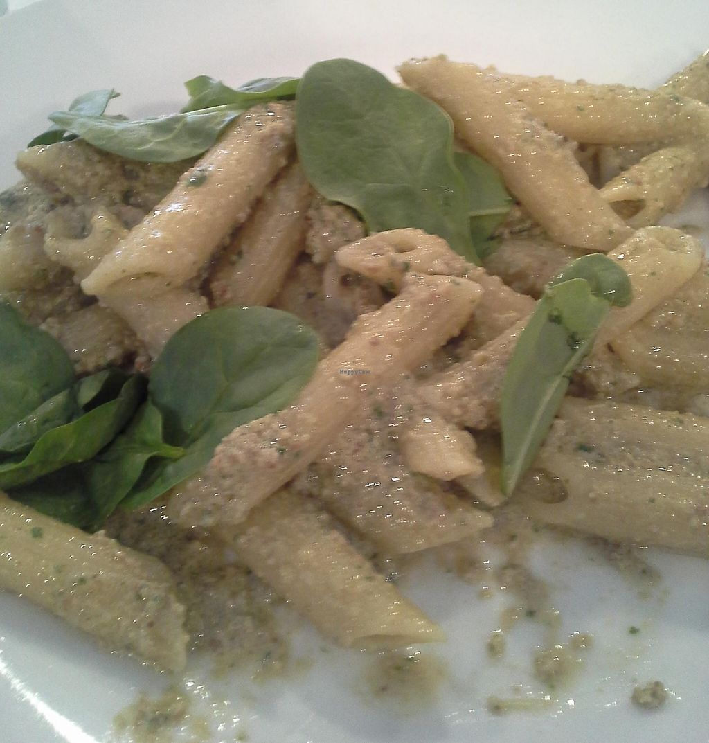 "Photo of Good Earth Organic Eatery  by <a href=""/members/profile/cinsaint"">cinsaint</a> <br/>vegan pesto pasta <br/> October 11, 2015  - <a href='/contact/abuse/image/32616/208570'>Report</a>"