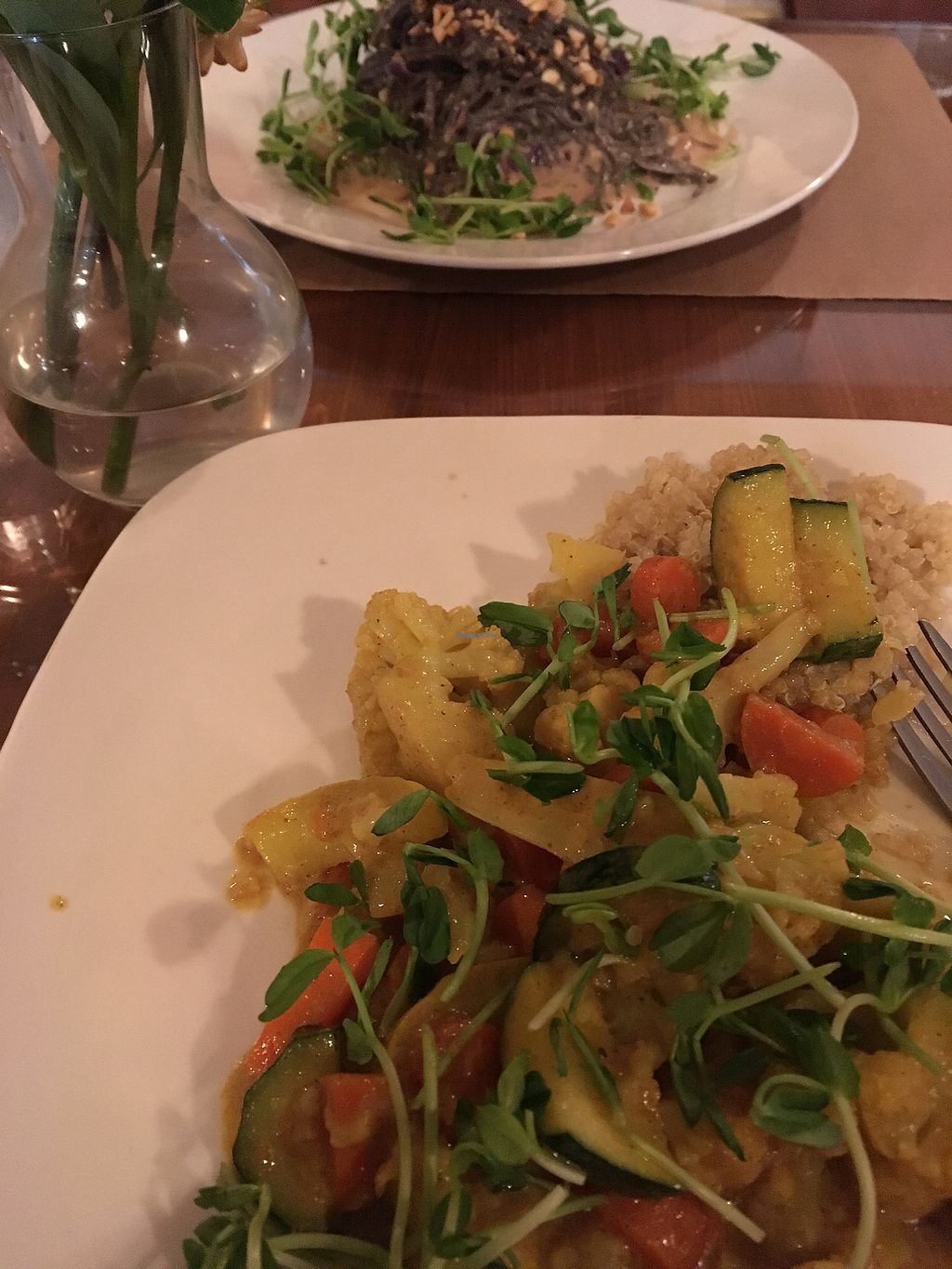 "Photo of Good Earth Organic Eatery  by <a href=""/members/profile/Philhower"">Philhower</a> <br/>vegan Thai yellow curry and black bean pasta with peanut sauce <br/> August 6, 2017  - <a href='/contact/abuse/image/32616/289494'>Report</a>"