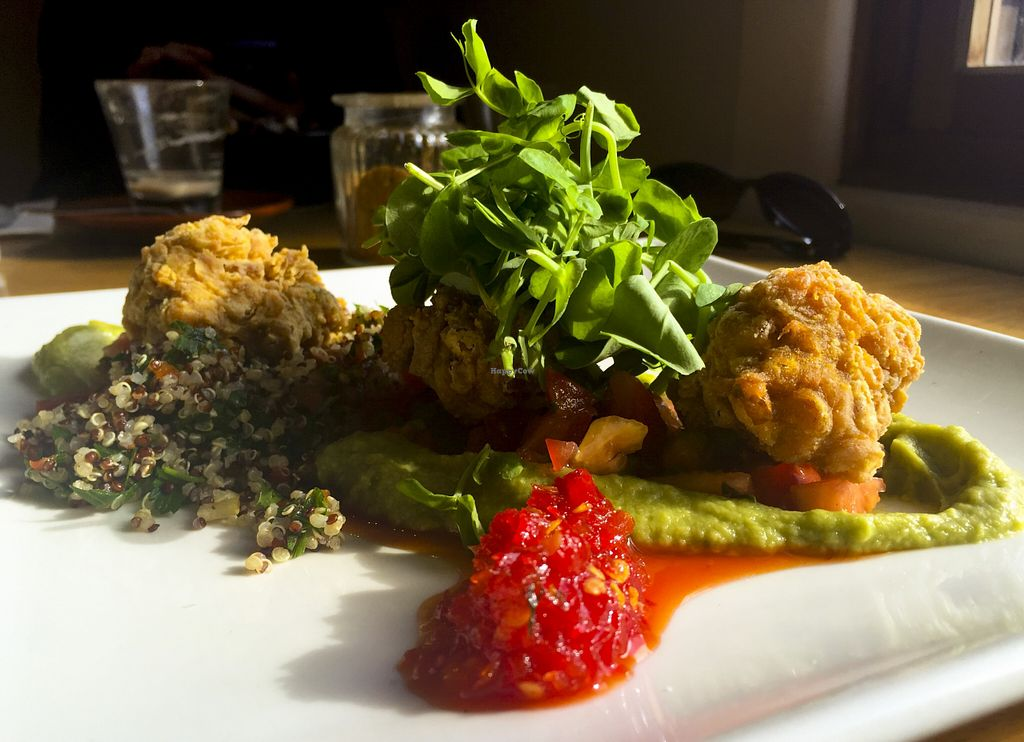 """Photo of CLOSED: Red Robyn  by <a href=""""/members/profile/karlaess"""">karlaess</a> <br/>Smoked Corn Fritters <br/> August 7, 2015  - <a href='/contact/abuse/image/32632/112665'>Report</a>"""