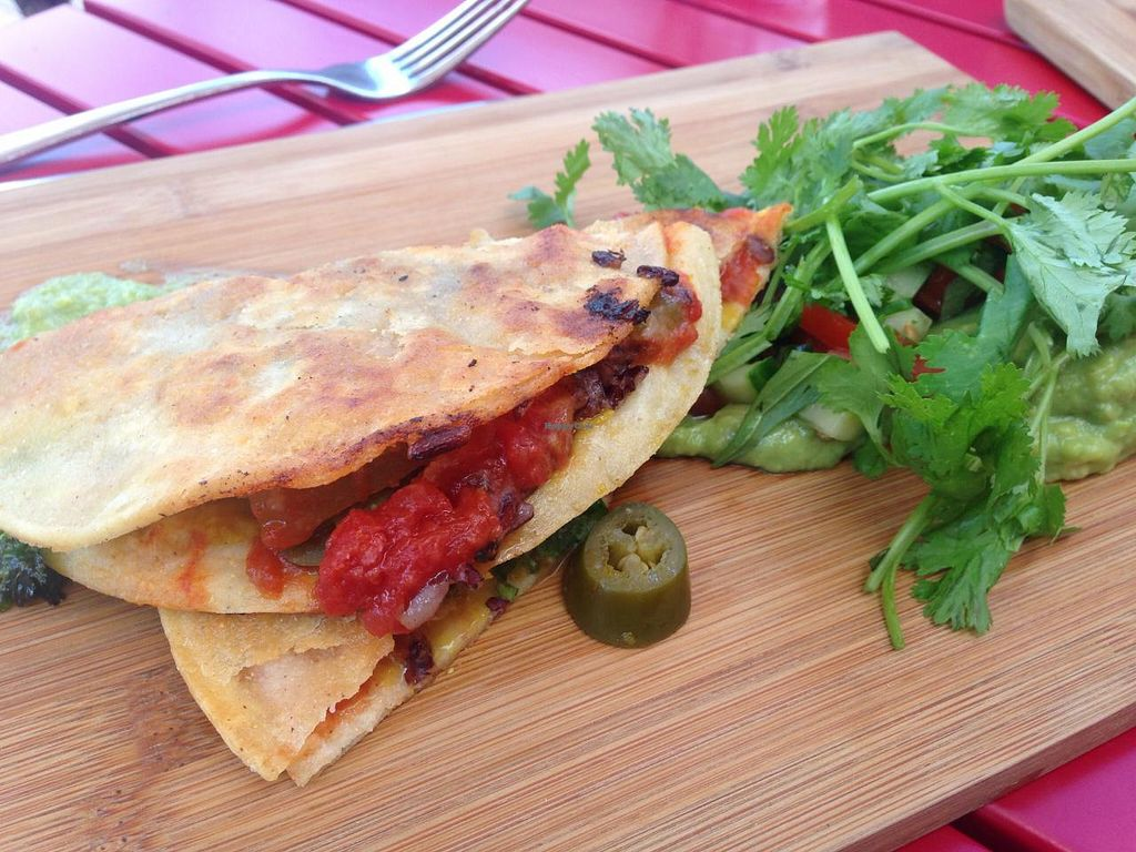 """Photo of CLOSED: Red Robyn  by <a href=""""/members/profile/Tiggy"""">Tiggy</a> <br/>Breakfast quesadilla - January 2015 <br/> January 17, 2015  - <a href='/contact/abuse/image/32632/90506'>Report</a>"""