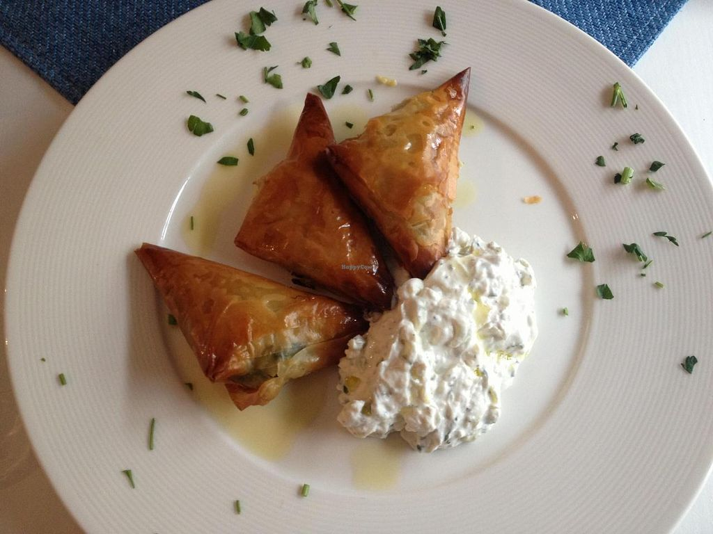 """Photo of Hellada Greek Tavern and Pizzeria  by <a href=""""/members/profile/thisplaceisheaven"""">thisplaceisheaven</a> <br/>vege dumplings with tzaziki <br/> May 26, 2014  - <a href='/contact/abuse/image/32636/70776'>Report</a>"""