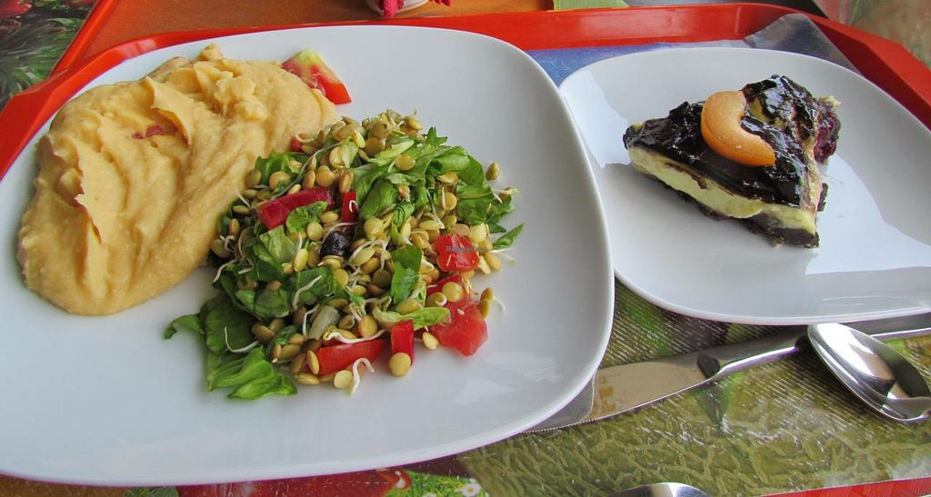 "Photo of Casa Vegetariana  by <a href=""/members/profile/Chris%20Phillips%20Vegan"">Chris Phillips Vegan</a> <br/>One of my lovely meals <br/> June 22, 2014  - <a href='/contact/abuse/image/32684/72521'>Report</a>"