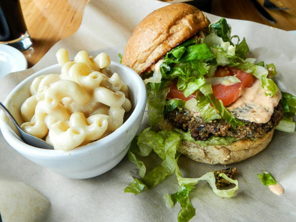 """Photo of Pig Minds Brewing  by <a href=""""/members/profile/EverydayTastiness"""">EverydayTastiness</a> <br/>black bean burger and mac & cheese <br/> April 19, 2015  - <a href='/contact/abuse/image/32686/99590'>Report</a>"""