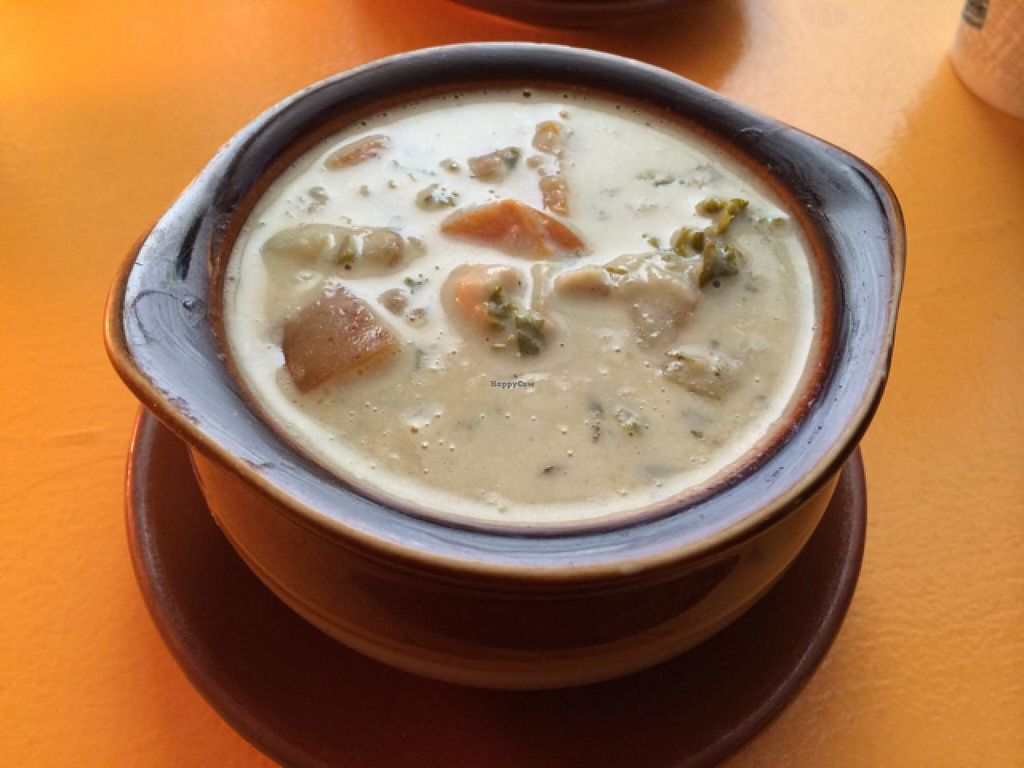 """Photo of CLOSED: Mother Earth Sanctuary Cafe  by <a href=""""/members/profile/kmilitello"""">kmilitello</a> <br/>vegan creamy potato and kale soup <br/> July 10, 2015  - <a href='/contact/abuse/image/32776/108795'>Report</a>"""