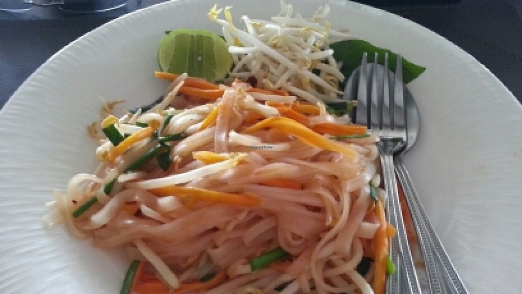 "Photo of Vikasa Yoga Retreat and Restaurant  by <a href=""/members/profile/eric"">eric</a> <br/>pad thai <br/> January 9, 2016  - <a href='/contact/abuse/image/32813/131557'>Report</a>"