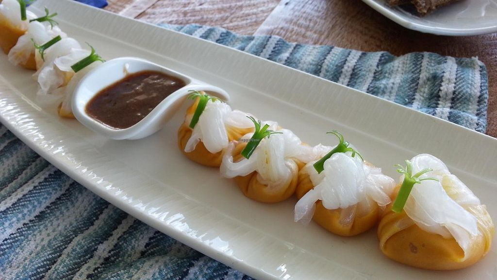"Photo of Vikasa Yoga Retreat and Restaurant  by <a href=""/members/profile/eric"">eric</a> <br/>Chinese style dumplings <br/> November 14, 2014  - <a href='/contact/abuse/image/32813/85560'>Report</a>"