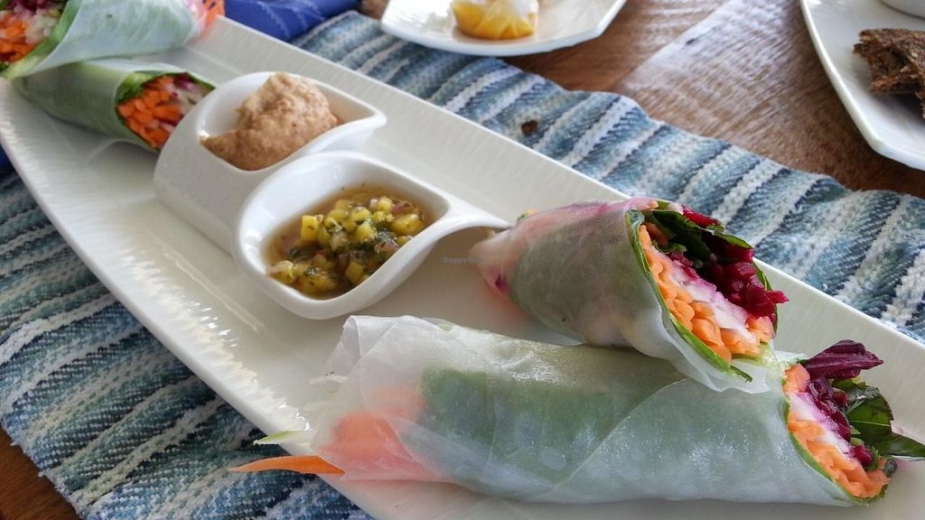 "Photo of Vikasa Yoga Retreat and Restaurant  by <a href=""/members/profile/eric"">eric</a> <br/>fresh spring rolls <br/> November 14, 2014  - <a href='/contact/abuse/image/32813/85561'>Report</a>"