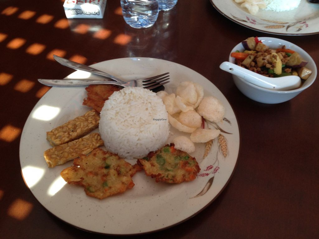 """Photo of I Love Vegetarian Food - De Ra Sa  by <a href=""""/members/profile/Michael.Milla"""">Michael.Milla</a> <br/>nasi campur - relatively mild, good taste <br/> October 26, 2015  - <a href='/contact/abuse/image/32847/122712'>Report</a>"""
