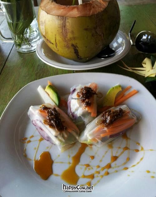 Photo of Dayu's Warung  by claireabella <br/>Fresh spring rolls <br/> June 24, 2012  - <a href='/contact/abuse/image/32883/33632'>Report</a>