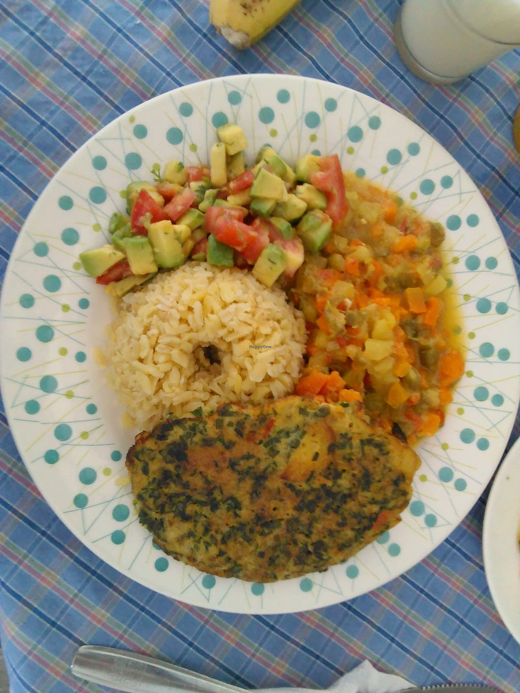 """Photo of REMOVED: Rincon Vegetariano  by <a href=""""/members/profile/maynard7"""">maynard7</a> <br/>Main plate, meal of the the day in March 2016 <br/> March 7, 2016  - <a href='/contact/abuse/image/32899/139125'>Report</a>"""