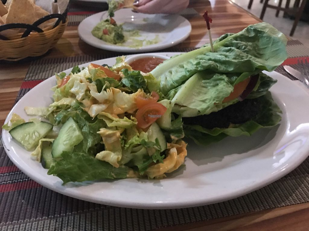 """Photo of Vegan Planet  by <a href=""""/members/profile/VanessaWinkler"""">VanessaWinkler</a> <br/>raw vegan hamburger  <br/> February 22, 2017  - <a href='/contact/abuse/image/32976/229060'>Report</a>"""