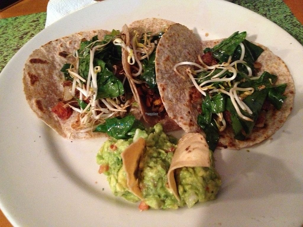 """Photo of Vegan Planet  by <a href=""""/members/profile/Rosa%20veg"""">Rosa veg</a> <br/>Vegan tacos  <br/> April 17, 2017  - <a href='/contact/abuse/image/32976/249387'>Report</a>"""