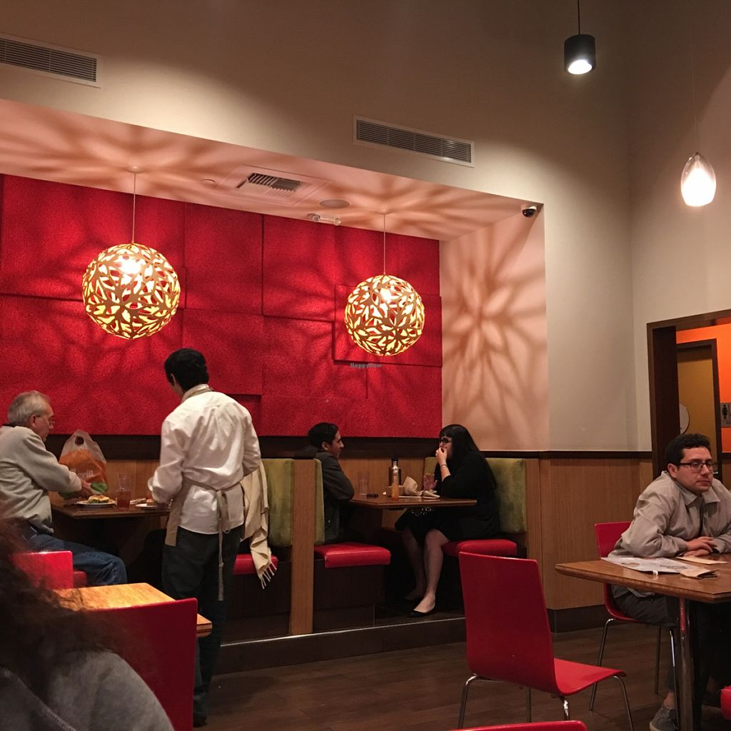 """Photo of Veggie Grill  by <a href=""""/members/profile/xmrfigx"""">xmrfigx</a> <br/>cool lamps <br/> December 18, 2015  - <a href='/contact/abuse/image/33046/129019'>Report</a>"""
