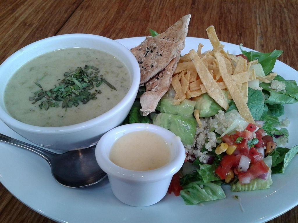 """Photo of Veggie Grill  by <a href=""""/members/profile/chobesoy"""">chobesoy</a> <br/>asparagus soup and Baja fiesta salad combo <br/> May 24, 2014  - <a href='/contact/abuse/image/33046/70657'>Report</a>"""