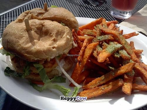 "Photo of CLOSED: Native Foods - Santa Monica  by <a href=""/members/profile/Sonja%20and%20Dirk"">Sonja and Dirk</a> <br/>chicken ranch burger with sweet potato fries <br/> November 8, 2013  - <a href='/contact/abuse/image/33047/58169'>Report</a>"