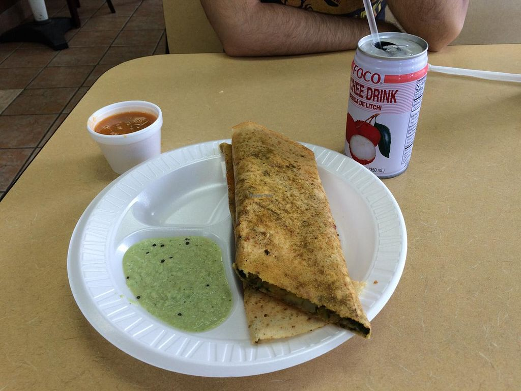 """Photo of Dosa Hut  by <a href=""""/members/profile/veggiehobbit"""">veggiehobbit</a> <br/>Spinach Masala Dosa with chutney and sambar  <br/> June 29, 2015  - <a href='/contact/abuse/image/3304/107681'>Report</a>"""