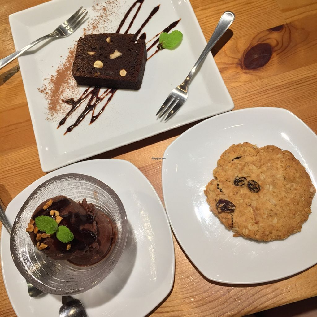 """Photo of CLOSED: Tosca  by <a href=""""/members/profile/MyVeganJoy"""">MyVeganJoy</a> <br/>Hazelnut Chocolate Icecream <br/> September 3, 2015  - <a href='/contact/abuse/image/33053/116258'>Report</a>"""