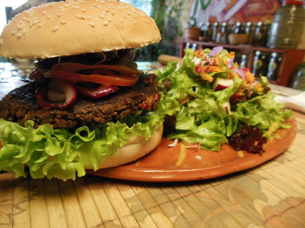 "Photo of Sativa Studio Cafe  by <a href=""/members/profile/VegRants"">VegRants</a> <br/>Vegan burger & salad <br/> March 7, 2014  - <a href='/contact/abuse/image/33092/65447'>Report</a>"