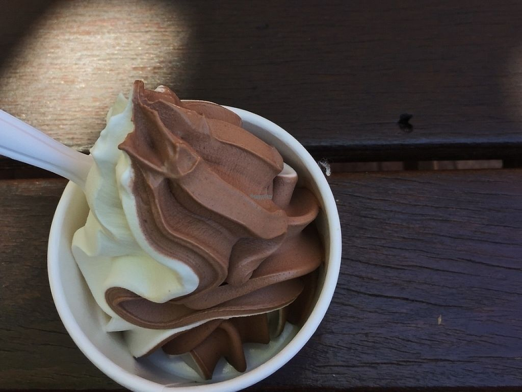 "Photo of Loving Hut - Victoria Park  by <a href=""/members/profile/caitjoy"">caitjoy</a> <br/>Vegan soft serve ice cream <br/> April 9, 2017  - <a href='/contact/abuse/image/33144/246321'>Report</a>"