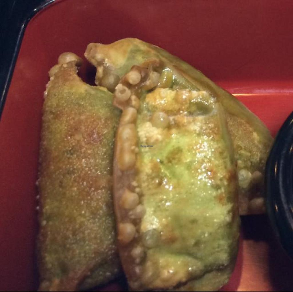 """Photo of CLOSED: Loving Vegan  by <a href=""""/members/profile/Evolving"""">Evolving</a> <br/>spinach gyoza <br/> June 26, 2014  - <a href='/contact/abuse/image/33252/72859'>Report</a>"""