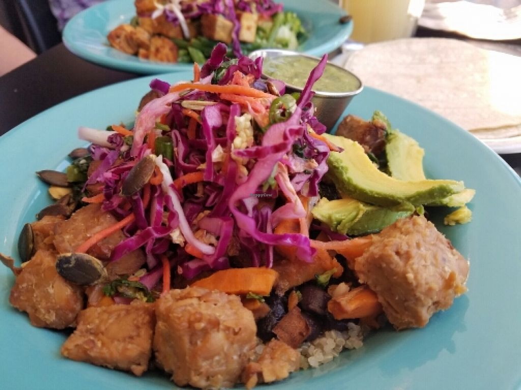 """Photo of Laughing Planet - Corvallis  by <a href=""""/members/profile/EverydayTastiness"""">EverydayTastiness</a> <br/>harvest bowl <br/> June 12, 2016  - <a href='/contact/abuse/image/33258/153673'>Report</a>"""