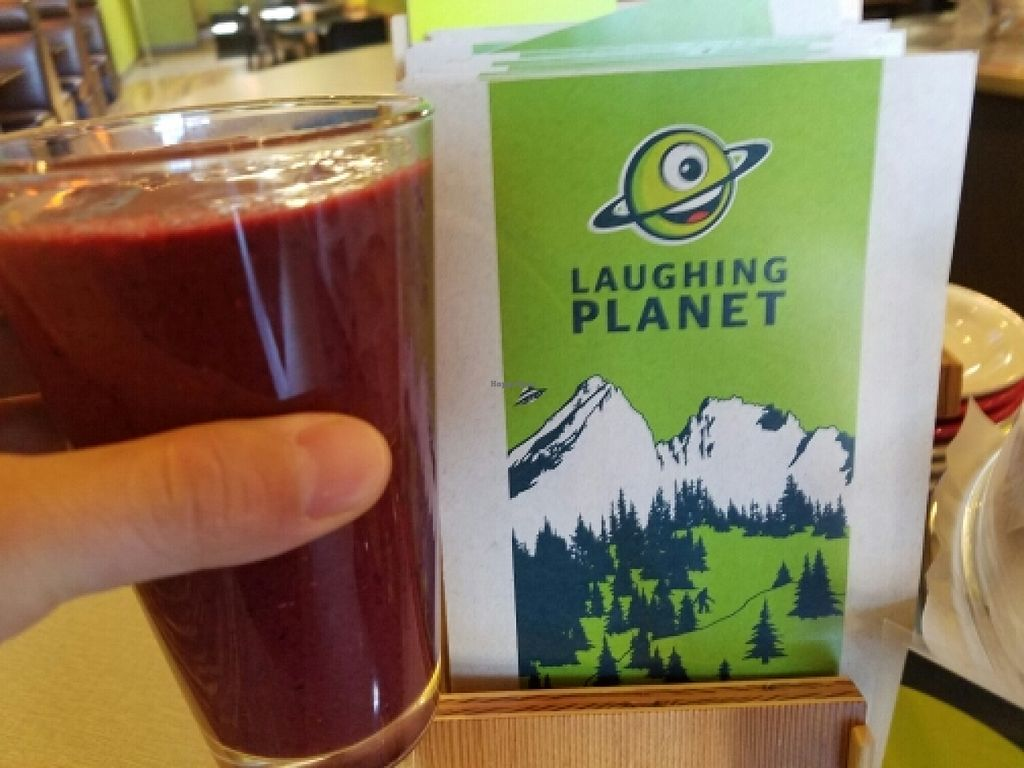 """Photo of Laughing Planet - Corvallis  by <a href=""""/members/profile/EverydayTastiness"""">EverydayTastiness</a> <br/>marionberry ginger smoothy <br/> June 12, 2016  - <a href='/contact/abuse/image/33258/153674'>Report</a>"""
