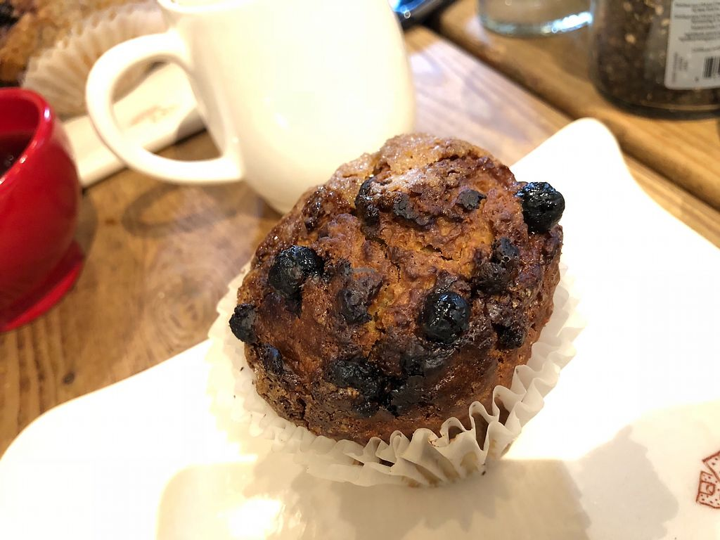 """Photo of Le Pain Quotidien - 7th Ave  by <a href=""""/members/profile/marky_mark"""">marky_mark</a> <br/>vegan blueberry muffin <br/> December 19, 2017  - <a href='/contact/abuse/image/33266/337317'>Report</a>"""
