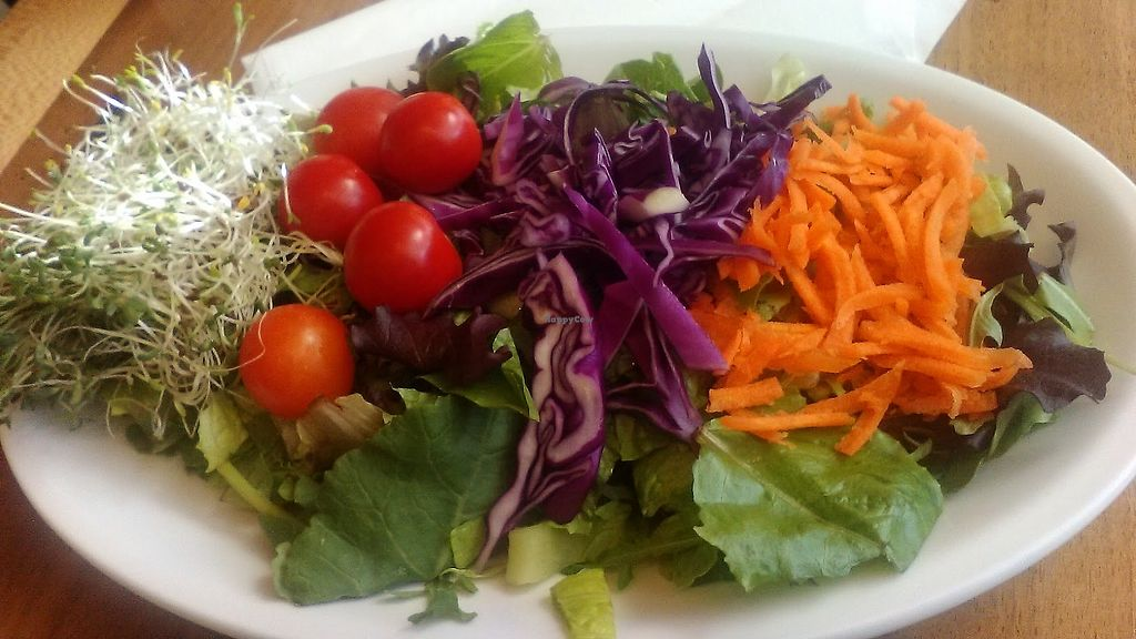 """Photo of Sissy's Cafe  by <a href=""""/members/profile/foodfirst"""">foodfirst</a> <br/>Artists' Salad, ordered with sprouts as an added ingredient and no dressing <br/> April 21, 2018  - <a href='/contact/abuse/image/33347/389201'>Report</a>"""