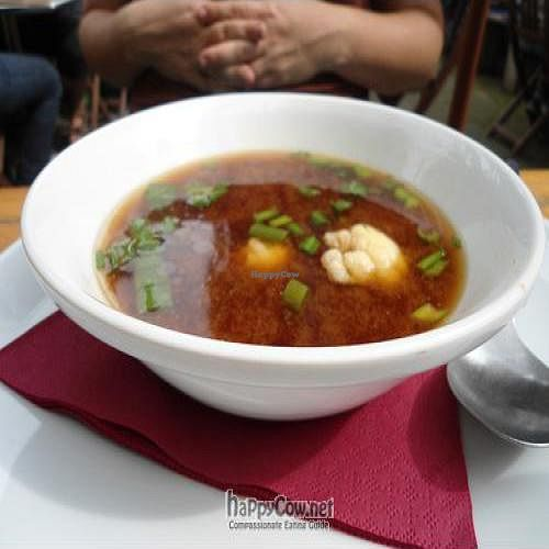 """Photo of CLOSED: Avalon  by <a href=""""/members/profile/elizabet"""">elizabet</a> <br/>Avalon: Miso Soup <br/> September 19, 2011  - <a href='/contact/abuse/image/3335/10712'>Report</a>"""