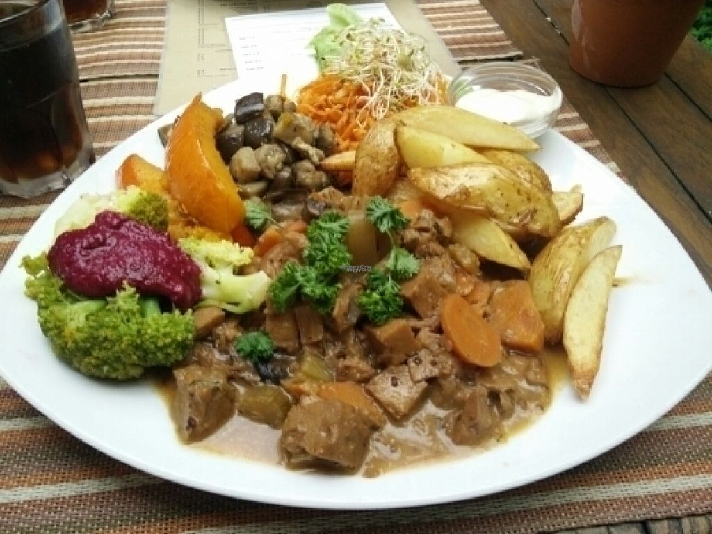 """Photo of CLOSED: Avalon  by <a href=""""/members/profile/Meaks"""">Meaks</a> <br/>Seitan stew and chunky fries and stuff <br/> August 1, 2016  - <a href='/contact/abuse/image/3335/164340'>Report</a>"""