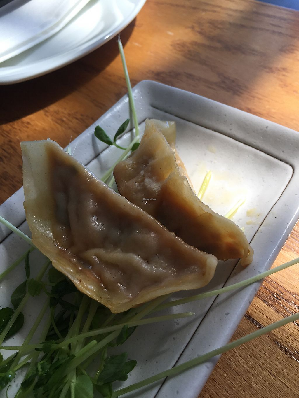 """Photo of Wild Rice  by <a href=""""/members/profile/TLC%20Veg."""">TLC Veg.</a> <br/>yummy potstickers <br/> August 26, 2017  - <a href='/contact/abuse/image/33372/297638'>Report</a>"""