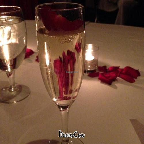 """Photo of Vermilion  by <a href=""""/members/profile/SynthVegan"""">SynthVegan</a> <br/>NYE champagne  <br/> January 7, 2013  - <a href='/contact/abuse/image/33435/42488'>Report</a>"""