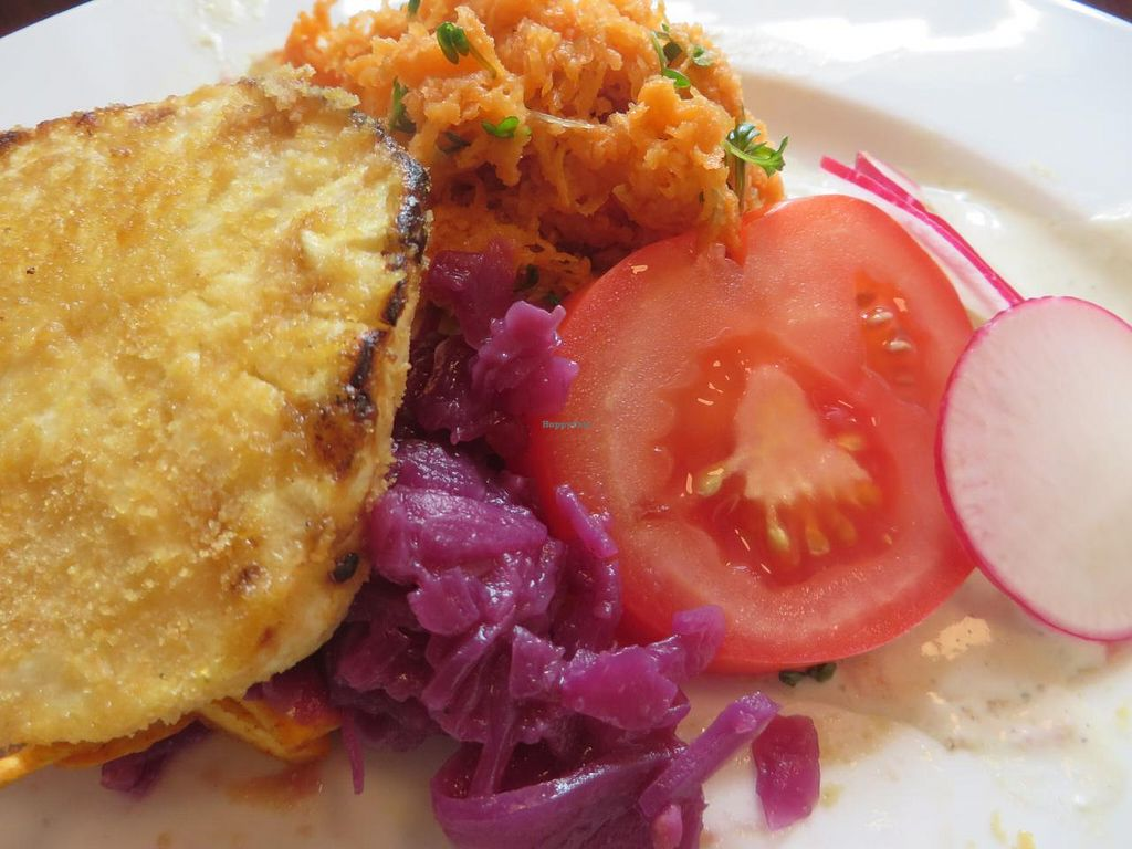 """Photo of Vollwert-S  by <a href=""""/members/profile/VegiAnna"""">VegiAnna</a> <br/>lunch buffet: celery schnitzel, carrot salad, red cabbage, tomatoes, and radish <br/> October 9, 2014  - <a href='/contact/abuse/image/33448/82425'>Report</a>"""
