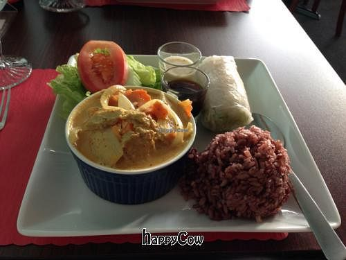 "Photo of Vegan Plate  by <a href=""/members/profile/SynthVegan"">SynthVegan</a> <br/>Yellow curry <br/> November 25, 2012  - <a href='/contact/abuse/image/33482/40650'>Report</a>"