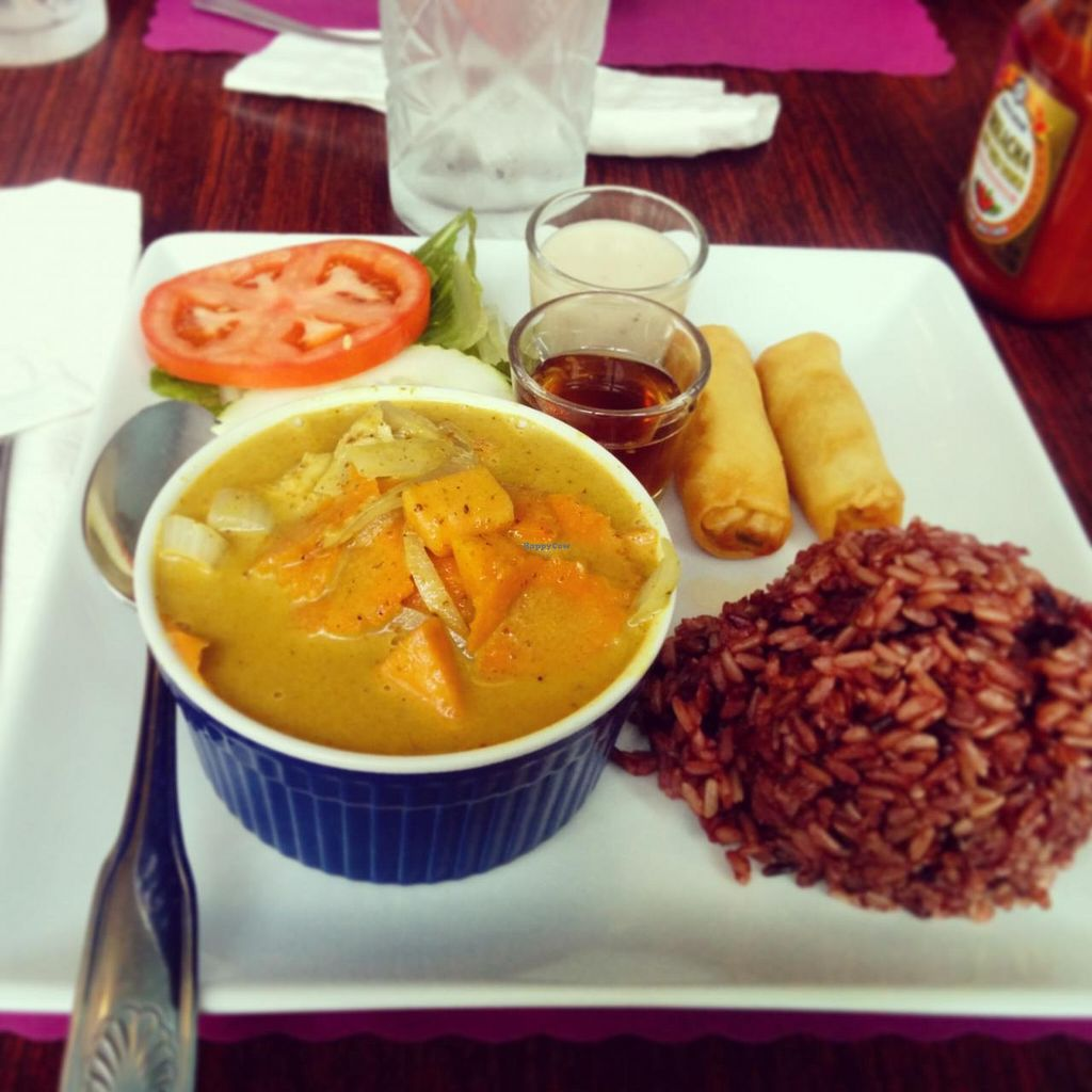 "Photo of Vegan Plate  by <a href=""/members/profile/makemenervous"">makemenervous</a> <br/>Yellow Curry Lunch Special  <br/> January 20, 2015  - <a href='/contact/abuse/image/33482/90867'>Report</a>"