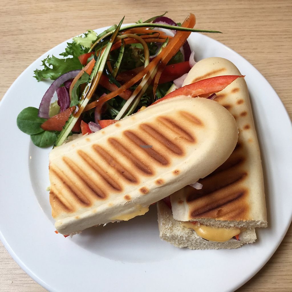 "Photo of Sugar and Spice  by <a href=""/members/profile/romyhoskin"">romyhoskin</a> <br/>tomato, red bell pepper and onion panini  <br/> April 13, 2017  - <a href='/contact/abuse/image/33604/247539'>Report</a>"