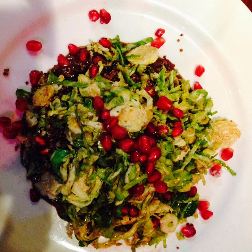 "Photo of New World Bistro Bar  by <a href=""/members/profile/Sofafilms"">Sofafilms</a> <br/>salad of shaved Brussels sprouts, pomegranate, and red quinoa  <br/> December 31, 2014  - <a href='/contact/abuse/image/33712/89162'>Report</a>"