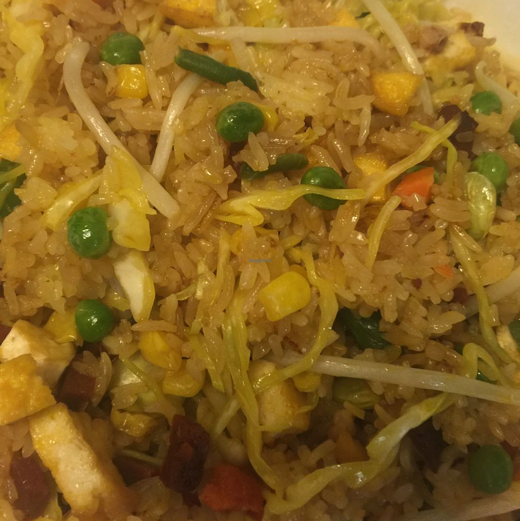 "Photo of Thien Dang Vegetarian  by <a href=""/members/profile/ReneeNButtercup"">ReneeNButtercup</a> <br/>fried rice <br/> February 22, 2016  - <a href='/contact/abuse/image/33714/137313'>Report</a>"