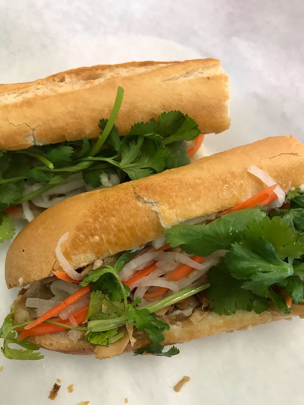 "Photo of Thien Dang Vegetarian  by <a href=""/members/profile/sjberrest"">sjberrest</a> <br/>Vegan Banh Mi Teriyaki ""chicken"" <br/> April 22, 2018  - <a href='/contact/abuse/image/33714/389594'>Report</a>"