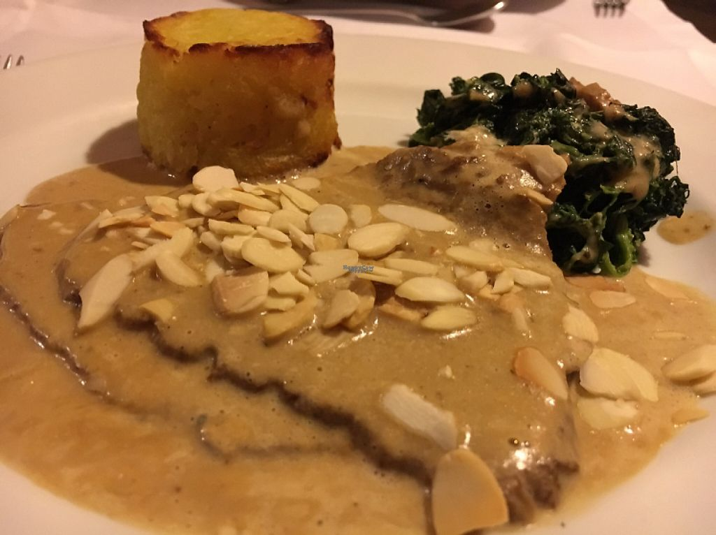"""Photo of Essencia  by <a href=""""/members/profile/hack_man"""">hack_man</a> <br/>seitan steak  <br/> April 10, 2017  - <a href='/contact/abuse/image/33794/246852'>Report</a>"""