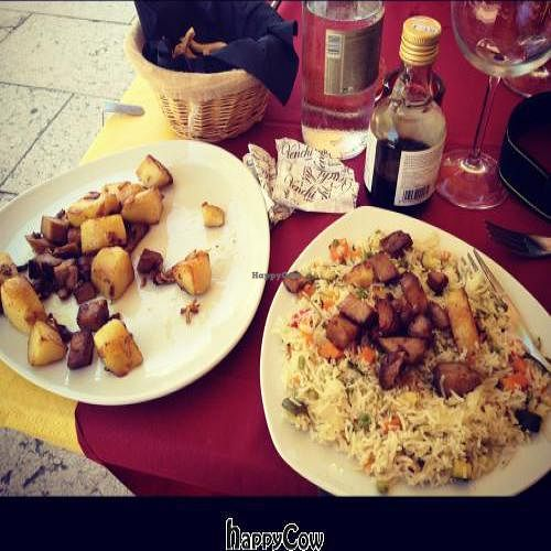 """Photo of Buddhabar  by <a href=""""/members/profile/Tigra220"""">Tigra220</a> <br/>Seitan & potatoes dish and veggie rice <br/> August 12, 2012  - <a href='/contact/abuse/image/33801/35976'>Report</a>"""