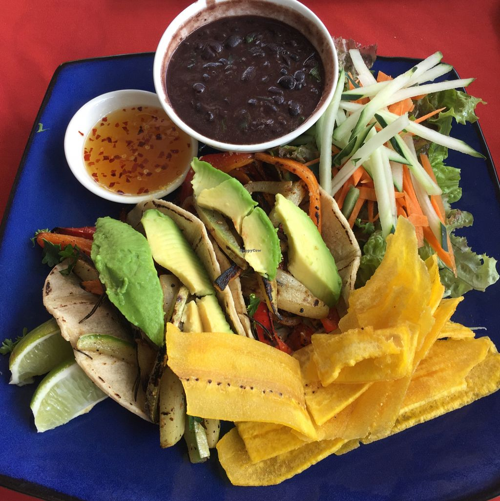 """Photo of Papaya  by <a href=""""/members/profile/misarawlins"""">misarawlins</a> <br/>vegetarian tacos.....so good! <br/> July 24, 2016  - <a href='/contact/abuse/image/33877/162054'>Report</a>"""