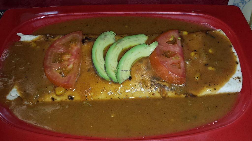"""Photo of Tarascos  by <a href=""""/members/profile/animalsRfriends"""">animalsRfriends</a> <br/>smothered bean burrito (vegan) <br/> May 4, 2014  - <a href='/contact/abuse/image/34029/69352'>Report</a>"""