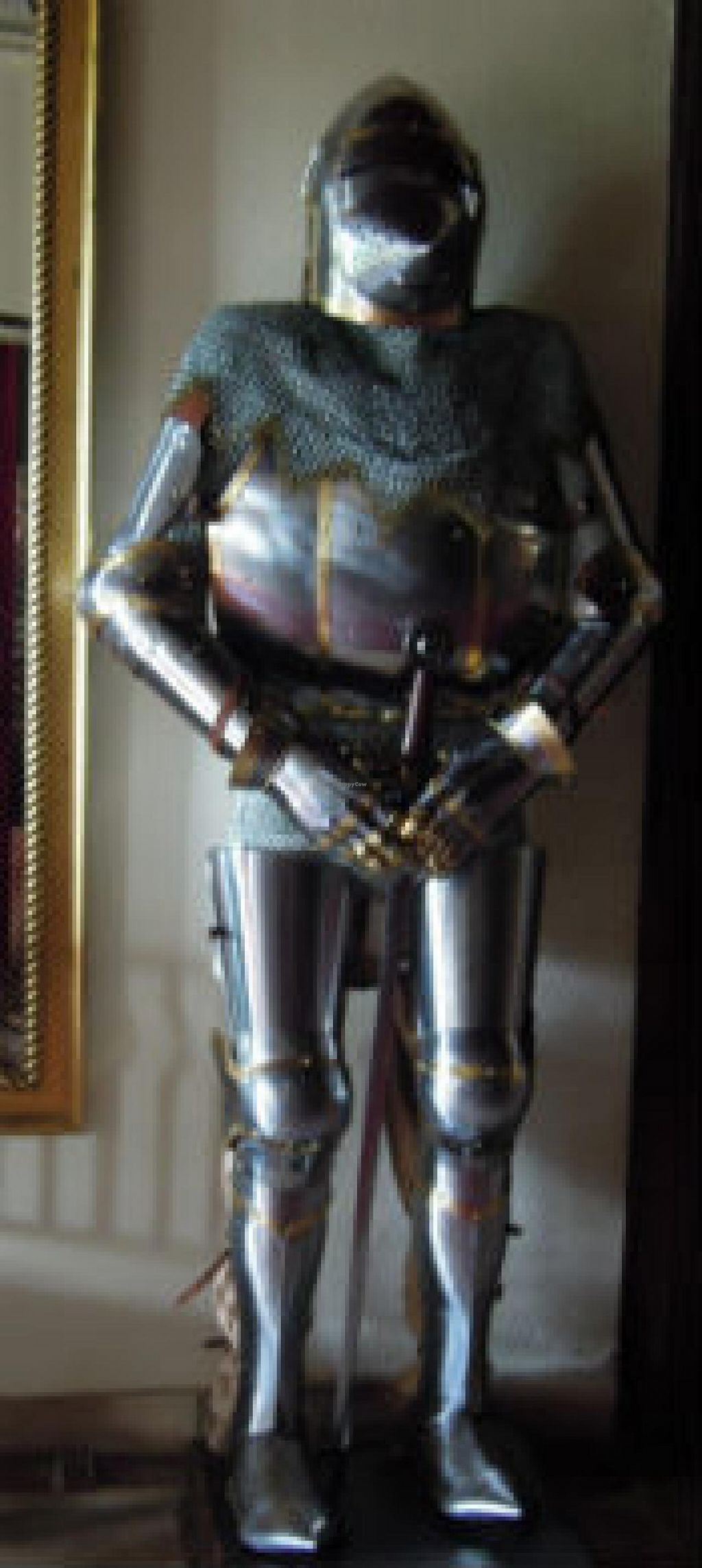 Photo of Le Logis des Quatre Puits  by PlantEaters <br/>This chap stands guard in the main hall <br/> July 13, 2014  - <a href='/contact/abuse/image/34122/73939'>Report</a>