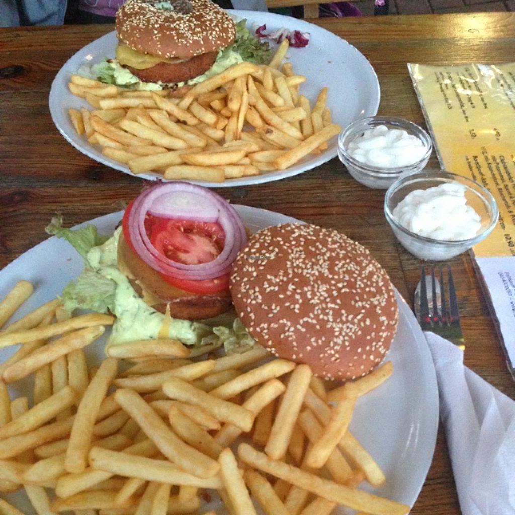 "Photo of Feldstern  by <a href=""/members/profile/vegitill"">vegitill</a> <br/>vegan cheeseburger at feldstern  <br/> January 21, 2014  - <a href='/contact/abuse/image/34342/62894'>Report</a>"