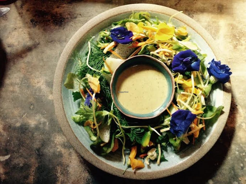 """Photo of Earth Tone  by <a href=""""/members/profile/Kwant"""">Kwant</a> <br/>local vegetable salad  <br/> June 16, 2016  - <a href='/contact/abuse/image/34371/154301'>Report</a>"""