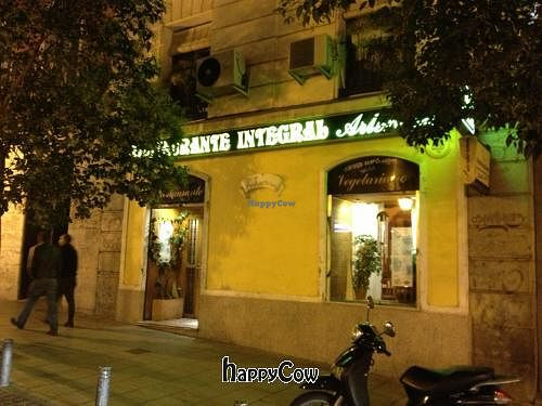 """Photo of Artemisa Sol - Gran Via  by <a href=""""/members/profile/PaulBrennan"""">PaulBrennan</a> <br/>Outside <br/> October 16, 2012  - <a href='/contact/abuse/image/34403/39156'>Report</a>"""